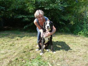 hondenpension Dogotel